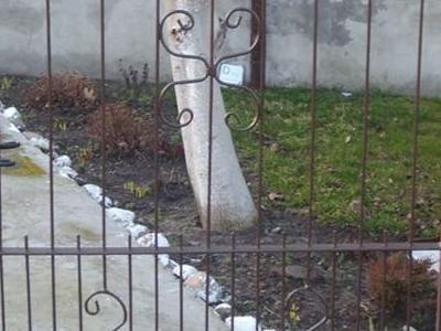 Stebud galeria ogrodzenia 1